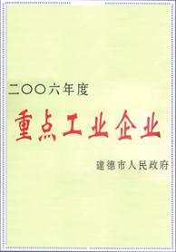 2006年重点工业企业